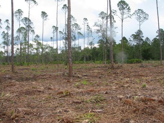 0 Woods 1226 1226, Callahan, FL - USA (photo 4)