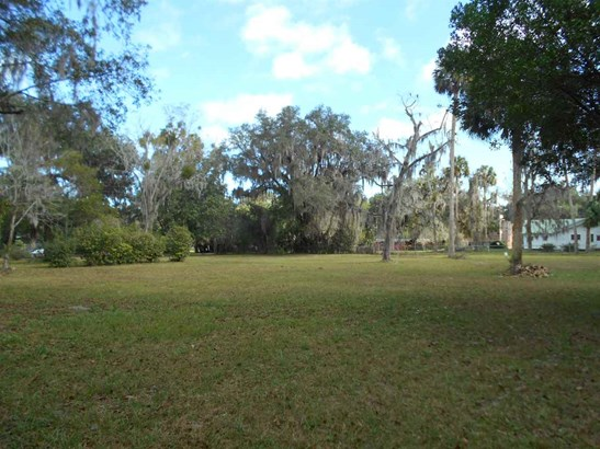 105 6 , Micanopy, FL - USA (photo 1)