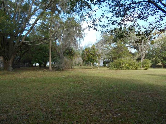 105 6 , Micanopy, FL - USA (photo 2)