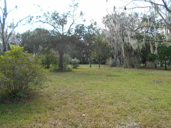 105 6 , Micanopy, FL - USA (photo 3)