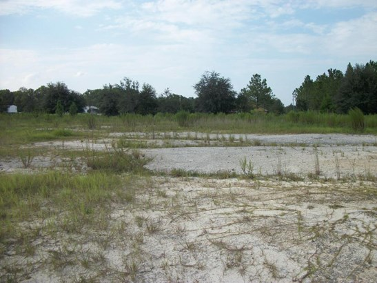 4170 County Road 218 , Middleburg, FL - USA (photo 5)