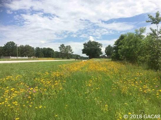 000 Hwy 45 , High Springs, FL - USA (photo 1)