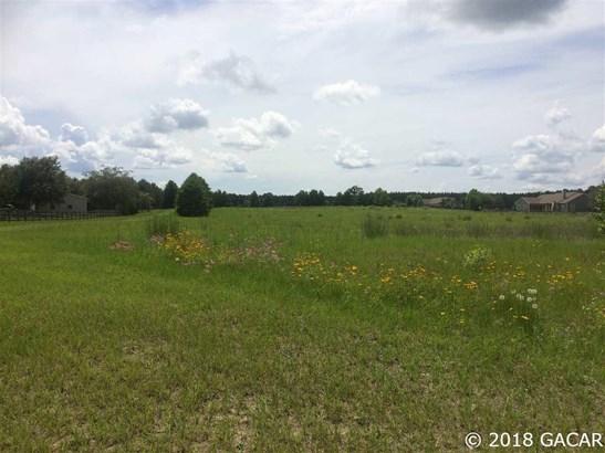000 Hwy 45 , High Springs, FL - USA (photo 4)