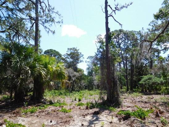 0 Osteen Parcel D , Oak Hill, FL - USA (photo 2)