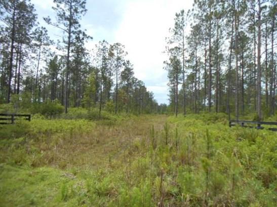 33315 Steeple Chase , Callahan, FL - USA (photo 3)