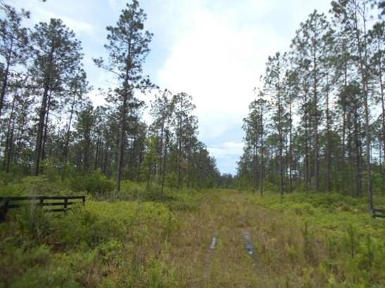 33315 Steeple Chase , Callahan, FL - USA (photo 4)