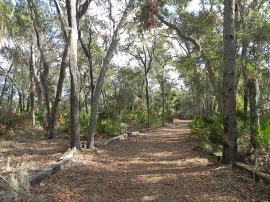 137 Marshall Creek Dr , St. Augustine, FL - USA (photo 3)