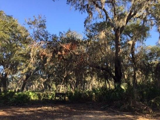 137 Marshall Creek Dr , St. Augustine, FL - USA (photo 4)