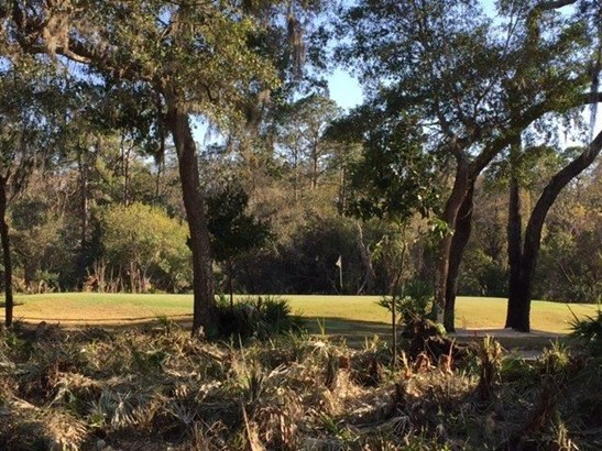137 Marshall Creek Dr , St. Augustine, FL - USA (photo 5)