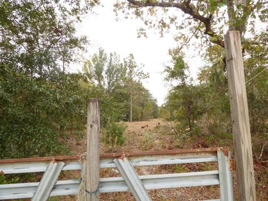 0000 Taylor , Orange Park, FL - USA (photo 2)