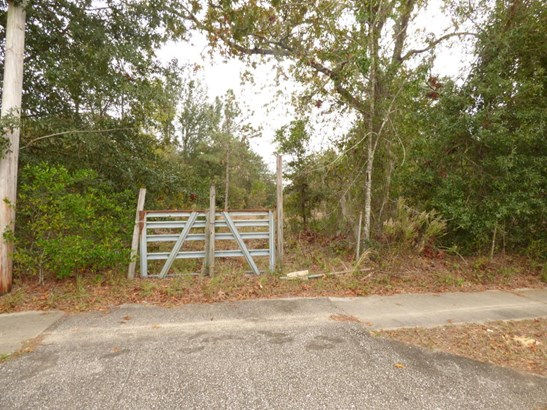 0000 Taylor , Orange Park, FL - USA (photo 3)