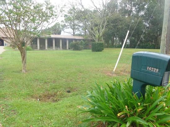 16229 Shellcracker , Jacksonville, FL - USA (photo 2)