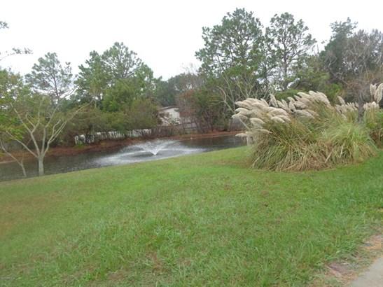 16229 Shellcracker , Jacksonville, FL - USA (photo 3)