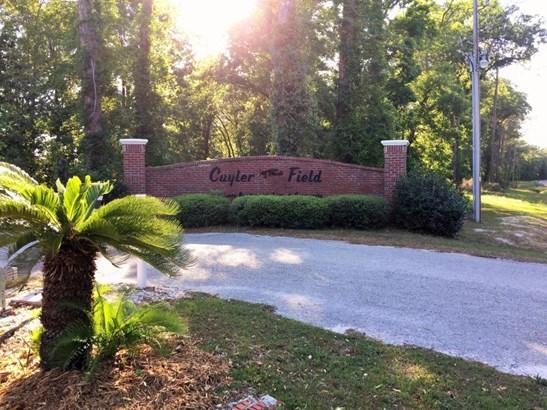 15814 Mohawk , Glen St. Mary, FL - USA (photo 5)