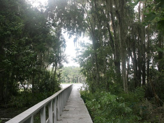 21214 114th , Waldo, FL - USA (photo 1)