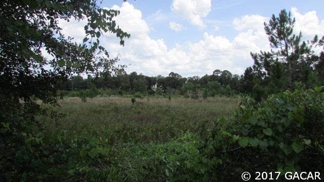 000 County Road 18 , Hampton, FL - USA (photo 4)