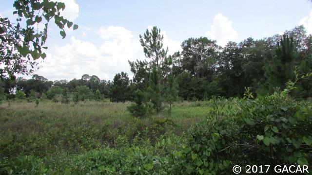000 County Road 18 , Hampton, FL - USA (photo 5)