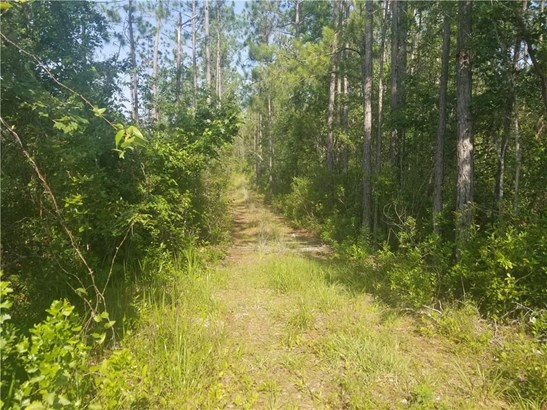 Lot 27 County Rd 108 , Hilliard, FL - USA (photo 1)