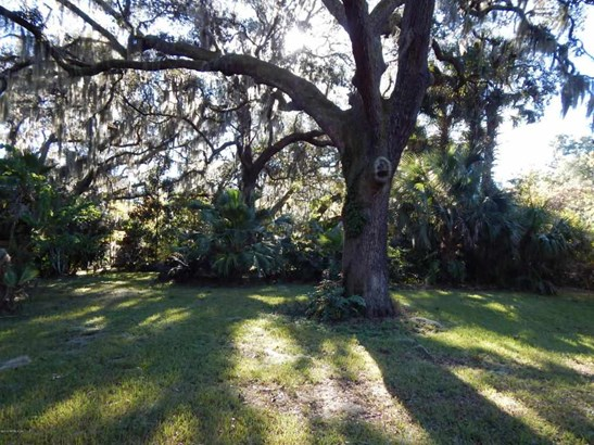 0 Cr218 Paso Fino Rd. , Green Cove Springs, FL - USA (photo 1)