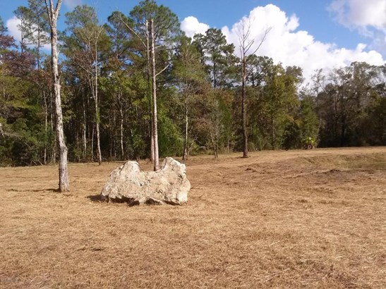 0 Landward , Middleburg, FL - USA (photo 1)