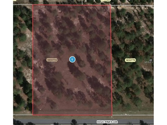 35643 High Pines , Eustis, FL - USA (photo 5)