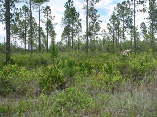 0 Sagebrush 1193 1193, Callahan, FL - USA (photo 1)