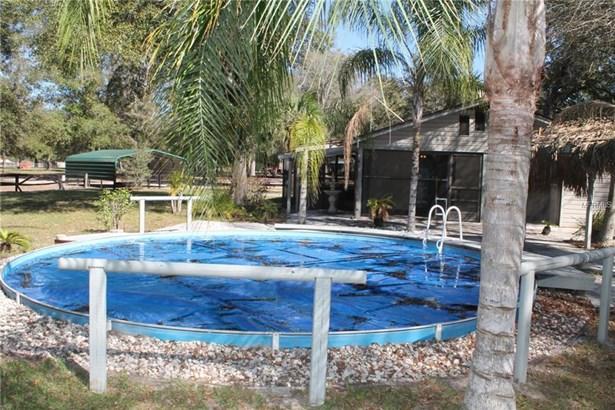 22850 Winterwillow , Eustis, FL - USA (photo 3)