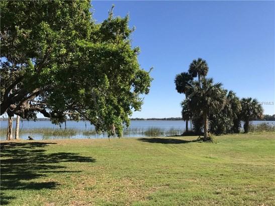 Blue Heron , Tavares, FL - USA (photo 4)