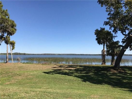 Blue Heron , Tavares, FL - USA (photo 5)