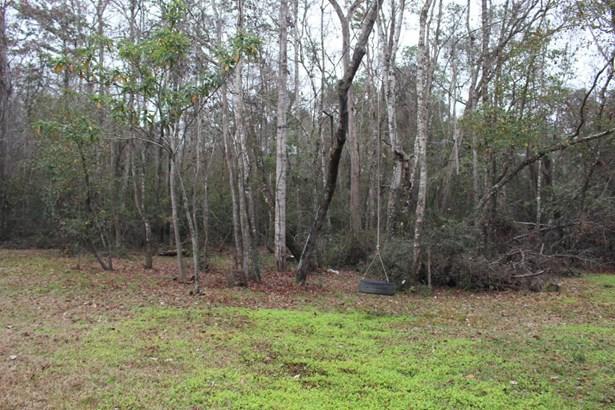 2625 Halperns , Middleburg, FL - USA (photo 4)