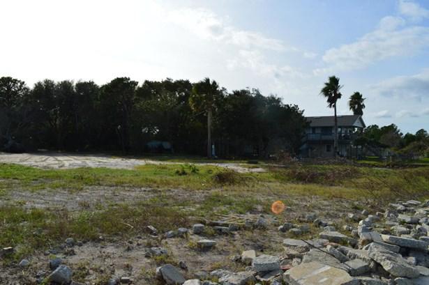 16141 Shellcracker , Jacksonville, FL - USA (photo 5)