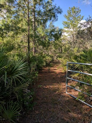 400 Volusian Forest , Pierson, FL - USA (photo 1)