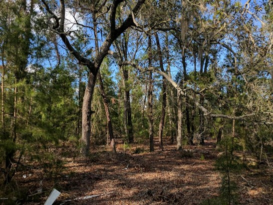 400 Volusian Forest , Pierson, FL - USA (photo 2)