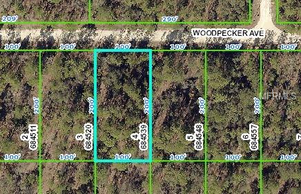 11114 Woodpecker , Weeki Wachee, FL - USA (photo 3)