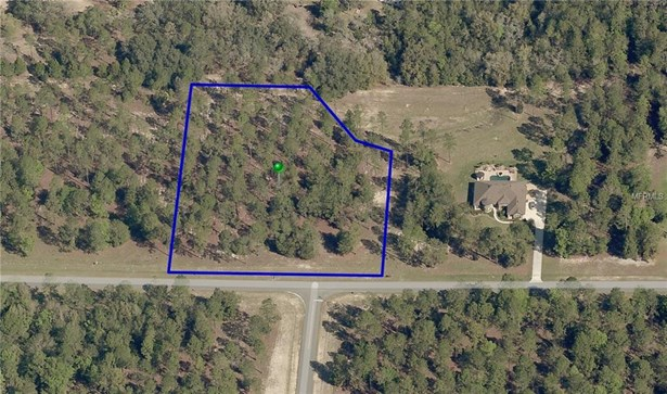 35703 High Pines , Eustis, FL - USA (photo 5)