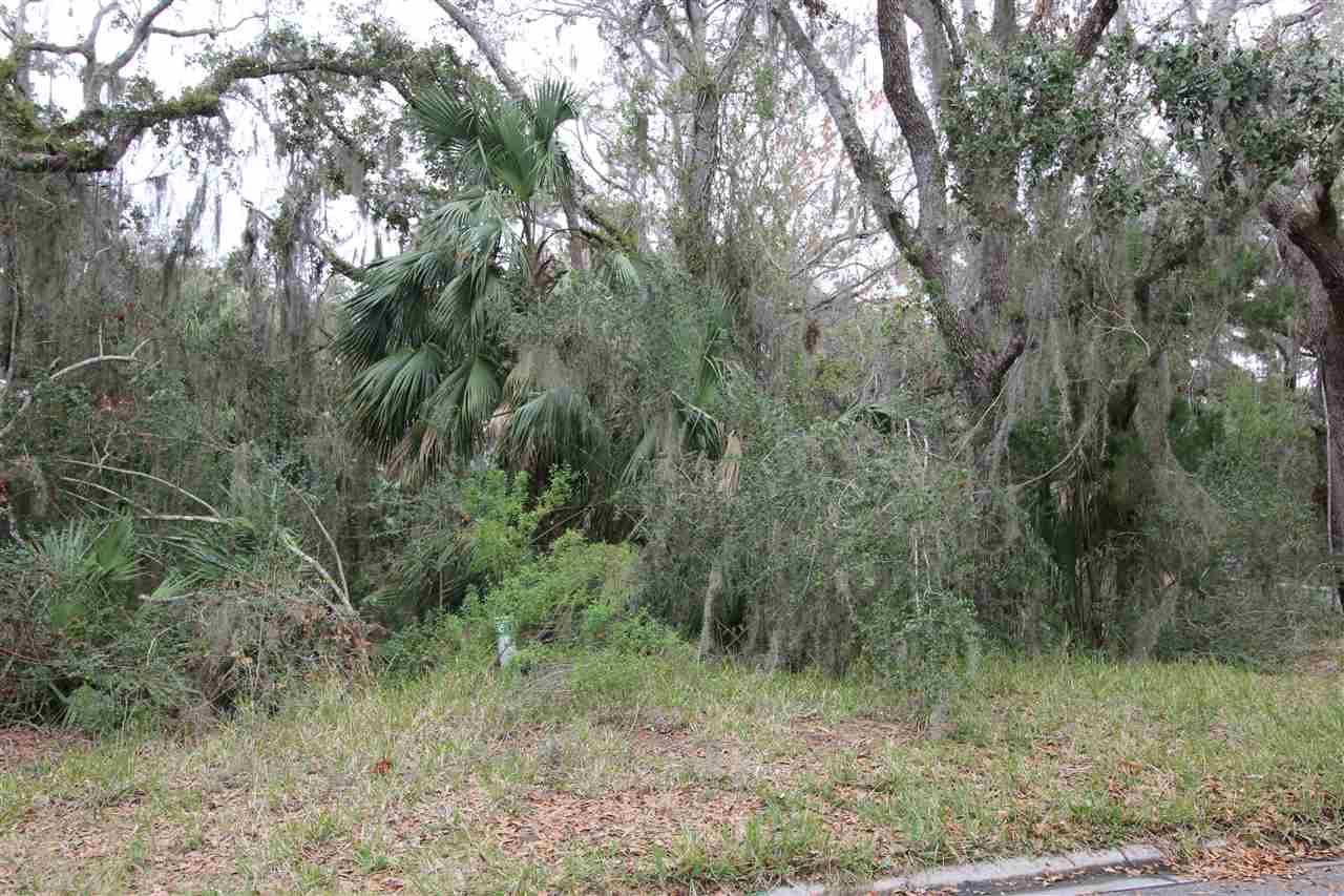 1101 Laughing Gull Ln. , Anastasia Island, FL - USA (photo 4)