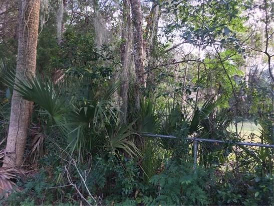 320 Arthur , De Leon Springs, FL - USA (photo 3)