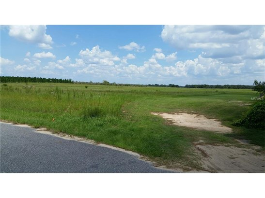 13642 Citrus Farms Dr , Astatula, FL - USA (photo 3)