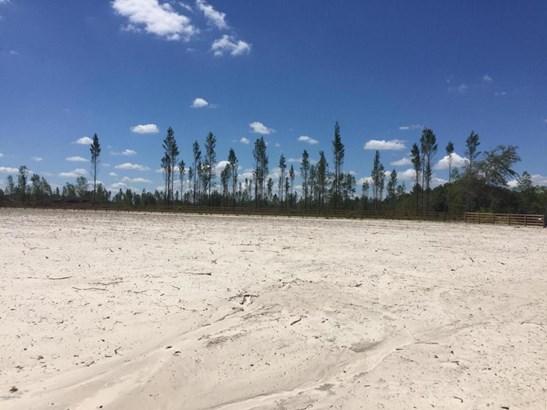 0 Cr 121 / Henry Lee , Hilliard, FL - USA (photo 2)