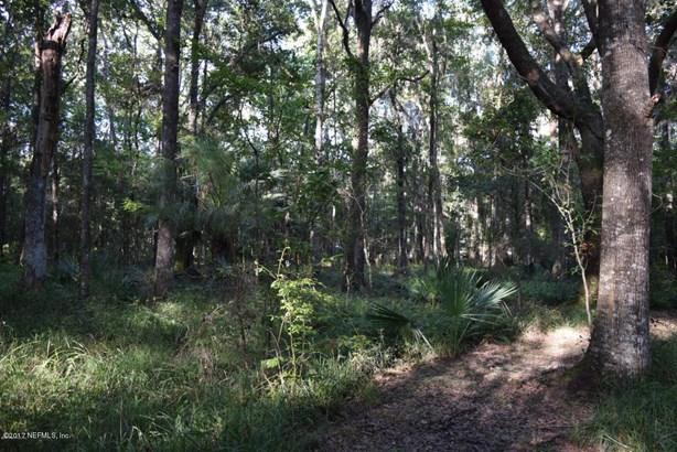 00 River Bend , Welaka, FL - USA (photo 1)
