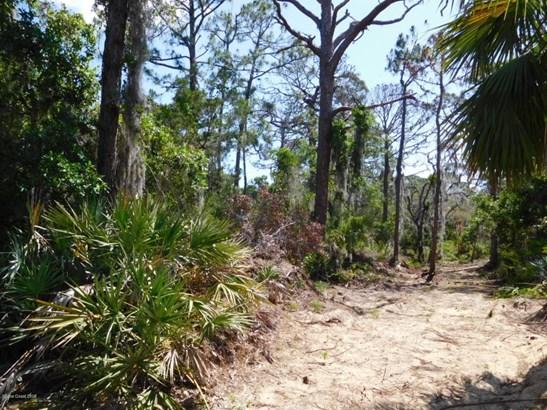 0 Osteen Parcel E , Oak Hill, FL - USA (photo 3)