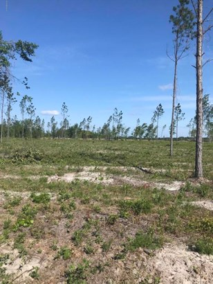 0 Co Rd 121 Lot 1 , Hilliard, FL - USA (photo 3)