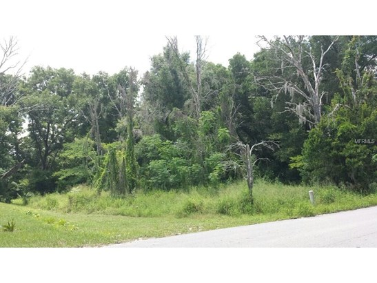 1516 Old Apopka , Apopka, FL - USA (photo 3)