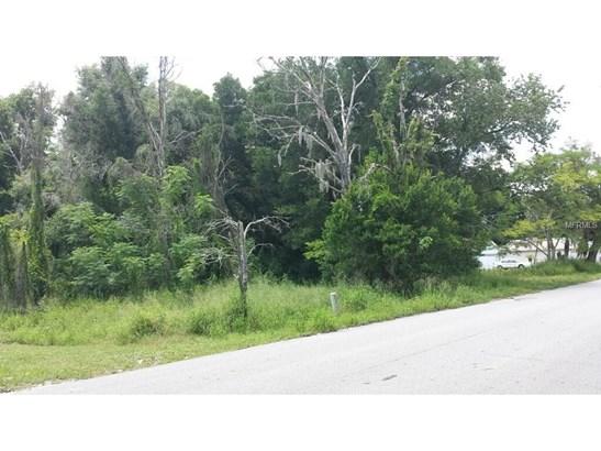 1516 Old Apopka , Apopka, FL - USA (photo 4)