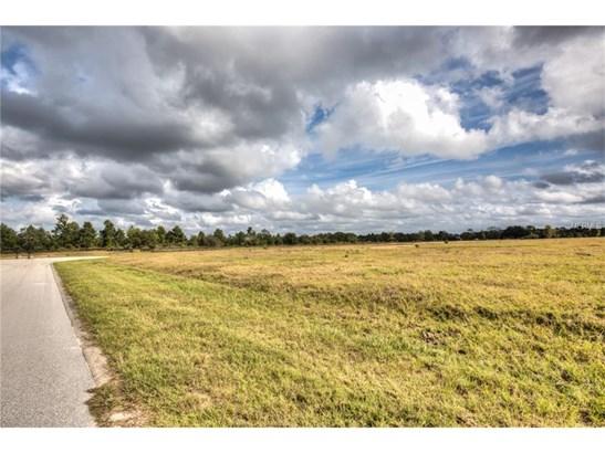 29222 Can Do , Tavares, FL - USA (photo 4)