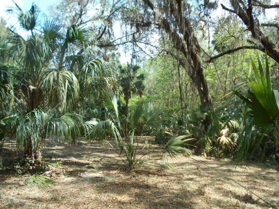 00 Wacahoota , Micanopy, FL - USA (photo 5)
