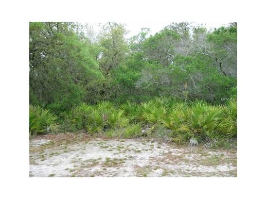 10138 Standing Woods , Sebring, FL - USA (photo 2)
