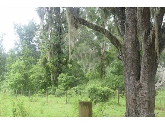 2030 Orange Hammock , De Leon Springs, FL - USA (photo 1)