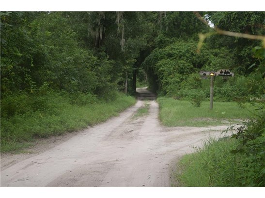 2030 Orange Hammock , De Leon Springs, FL - USA (photo 5)