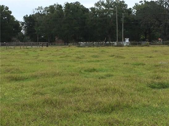 Carter , Deland, FL - USA (photo 3)